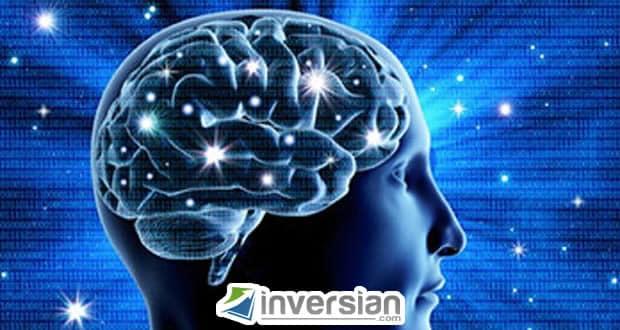 Cómo insertar conocimiento en el cerebro