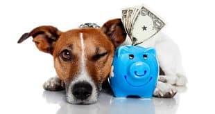 Sin embargo, hay algunos trucos para ahorrar dinero día a día, eficazmente y sin demasiado sacrificio. Cómo ahorrar dinero en casa sin gastarlo