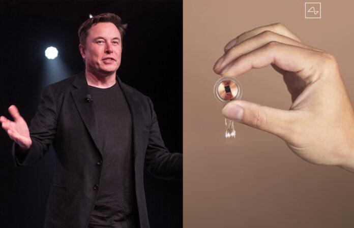 Implante cerebral de Elon Musk es probado en cerdos